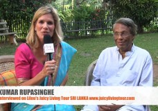 Supporting planetary consciousness – Kumar Rupasinghe